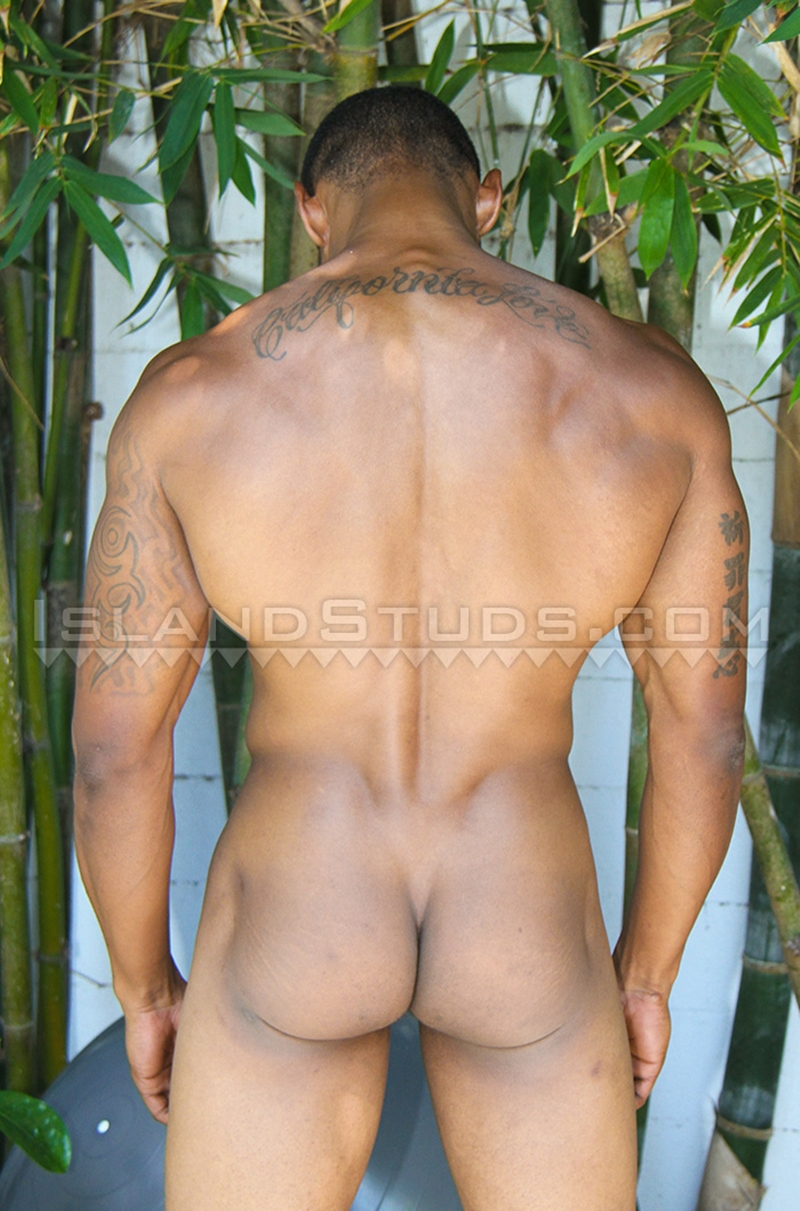 IslandStuds-Horse-hung-Honolulu-muscle-boy-Darius-King-Afro-American-big-thick-black-cock-full-erection-013-nude-men-tube-redtube-gallery-photo