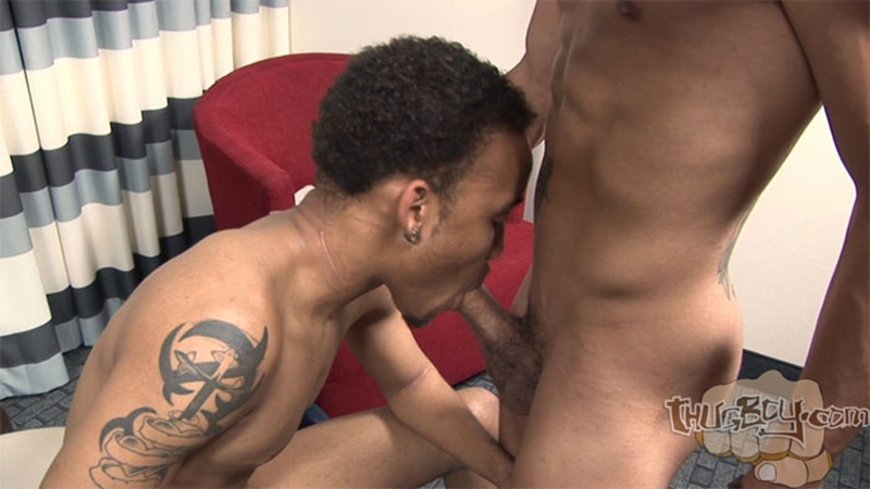 ThugBoy Baby Star Chaos Cartier gay thug porn black gay thugs gay black thugs thug gay porn gay black thug porn thugboy black thug porn 003 tube download torrent gallery sexpics photo - Baby Star and Chaos Cartier
