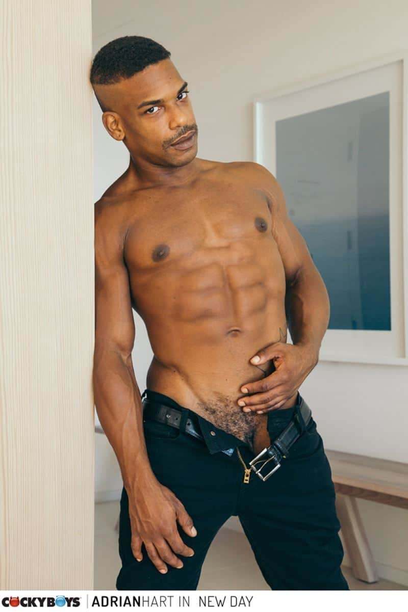 Sexy ripped black muscle stud Adrian Hart huge cock bareback fucking young dude Tannor Reed tight boy ass 006 gay porn pics - Sexy ripped black muscle stud Adrian Hart's huge cock bareback fucking young dude Tannor Reed's tight boy ass
